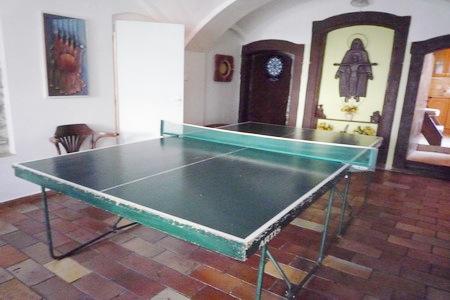 Chaty a chalupy k pronajmutí - Chalupa v Rampuších - stolní tenis